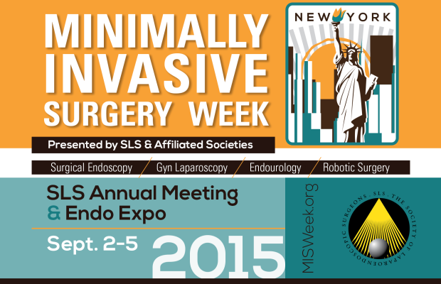 MIS Week 2015 Call for Abstracts